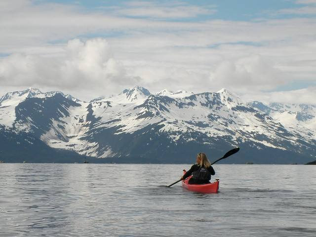 Expédition kayak dans le golfe de Prince William Sound. Alaska